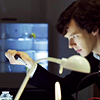 cowards_kiss: (sherlock)
