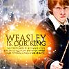nodivision: ([Harry Potter] King Ron)