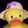 dr4b: (duck)