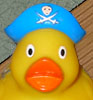 dr4b: (pirate duck)