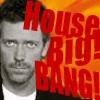 house_bigbang: (Default)