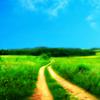 jackjanderson: (The Long & Winding Road)