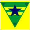 kyleri: A point-down green triangle with two horizontal yellow stripes & a blue star -- the Browncoats symbol. (browncoats)