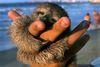 labelleizzy: (hugging)