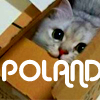 oldkings: (my box is not poland.)