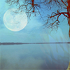 waxbox: (stock | moonlit lake)