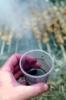 benia: (myaso vino)
