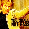 alorn_bear: (you shall not pass)