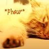 ext_148329: (Cat Phow)