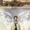 sacrilicious13: (Wings)