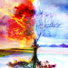 sacrilicious13: (Four season tree)