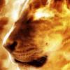 assucareira: (огненный лев)