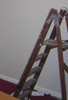 juliet: Decorating stepladder and bare wall (decorating)
