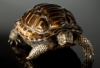 gracegrey: tiger's eye and bronze tortoise sculpture (sculpture)