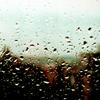 selenias: (Rain)