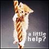 kitty_poker: (NF-Kitty help)