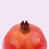 juliedarling: (General - Pomegranate, Pomegranate)
