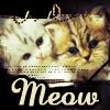 zimena: (Misc - Meow!)