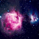 vivianesection: made of stardust (nebula)