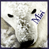 miri: Face of polar bear and my name. (Default)