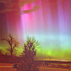 distantmakers: an open field hedged by trees with the aurora borealis visible in the sky over them all (Default)
