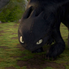 catdragon: (Toothless1)