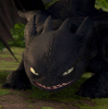 catdragon: (Toothless2)