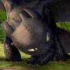 catdragon: (Toothless3)