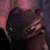 catdragon: (Toothless9)