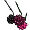 raspberryrain: (raspberries)