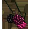 raspberryrain: (raspberries, fruity, cutie mark?)