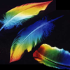 fullygoldy: Rainbow painted Feathers (Feather Rainbow)