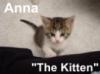 kalinda001: (Anna Kitten Looks Up)