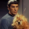 runpunkrun: spock holding a furry alien in his arms (actually a dog in an alien suit) (spock says fml)
