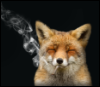cosmicdawn: a fox smoking happily (Default)