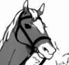 crosslaced: (horse)
