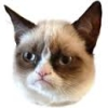 replyhazy: (grumpycat)