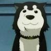 strictdiscipline: (DOGE)