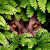huntersoftheheart: (pic#11175639)