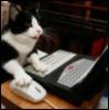 teas_me: (computer cat)