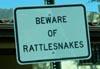 soluspyxis: (snake)