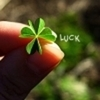 finding_tobias: (luck)