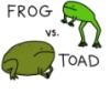 mayklusha: (frog vs toad)