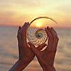 silhiriel: (summer seashell)