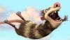 slothsnest: (Опоссум)