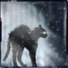 neirfy: (blackcat)