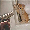 kat_bilbo: (gun)