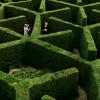 teadog1425: (Maze)