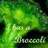 arabwel: (Broccoli)
