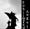 sublimatedangel: (angel silhouette)